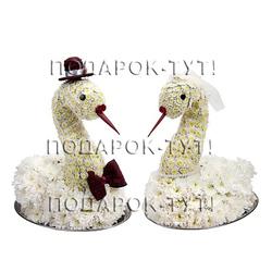Лебедь №4