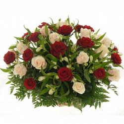 Корзина 27 роз с альстремерией